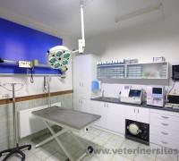 21076-petmania-veteriner-klinigi-33