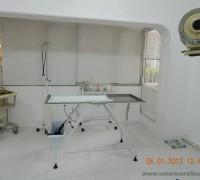 21129-layka-veteriner-klinigi-727