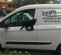 vetplus-veteriner-poliklinigi-12