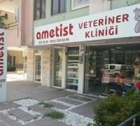 21159-ametist-veteriner-klinigi-552