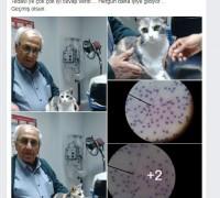 21202-egem-veteriner-klinigi-379