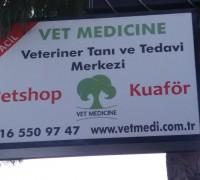 21236-vetmedicine-815