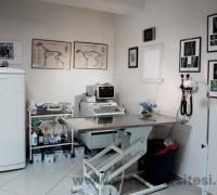 21240-petvet-veteriner-tip-merkezi-749