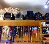 21265-animales-veteriner-klinigi-91