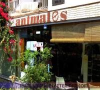 21268-animales-veteriner-klinigi-706
