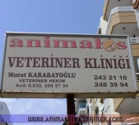 21272-animales-veteriner-klinigi-187