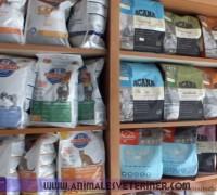 21276-animales-veteriner-klinigi-306