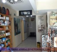 21278-animales-veteriner-klinigi-353