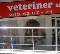 21333-vetline-veteriner-klinigi-354