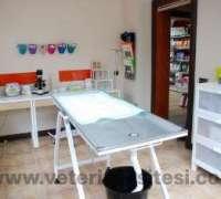 catish-ve-dogish-veteriner-muayenehanesi-884