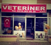 21413-nunavet-veteriner-klinigi-65