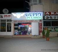 Guppy Pet Shop