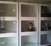21445-medica-veteriner-muayenehanesi-648