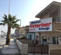 21516-mavivet-veteriner-klinigi-561