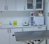 21517-yesilova-veteriner-klinigi-598