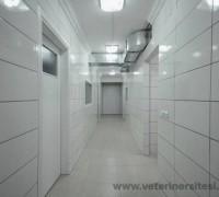 21561-bremens-saglik-hizmetleri-veteriner-klinigi-439