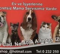 21586-selin-petshop-999