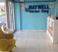 21623-maywell-493