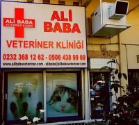 21757-ali-baba-veteriner-klinigi-37
