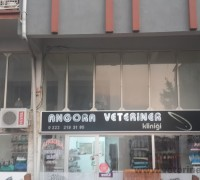 21935-angora-veteriner-klinigi-334