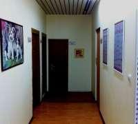 botanik-veteriner-klinigi-534