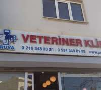 pruva-veteriner-klinigi-410