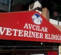 avcilar-veteriner-klinigi-383