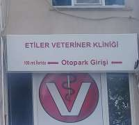 etiler-veteriner-klinigi-837