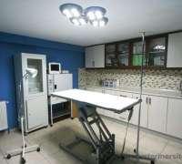 myvet-veteriner-klinigi-72