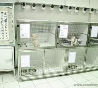 taurus-veteriner-klinigi-118