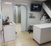 beylikduzu-beykent-veteriner-klinigi-592