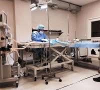 galen-veteriner-klinigi-96