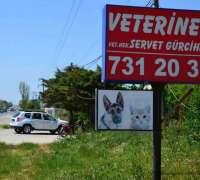 kumburgaz-veteriner-klinigi-647