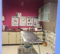 cekmekoy-minik-patiler-veteriner-klinigi-435