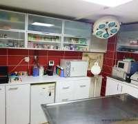 halic-veteriner-klinigi-524