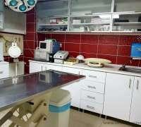 halic-veteriner-klinigi-876
