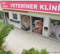 all-animal-veteriner-klinigi-191