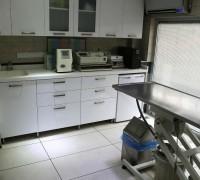 all-animal-veteriner-klinigi-344