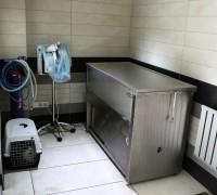 all-animal-veteriner-klinigi-560