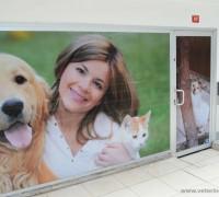 all-animal-veteriner-klinigi-805