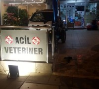 baris-veteriner-klinigi-336