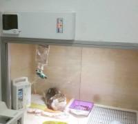baris-veteriner-klinigi-671