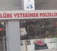 Kulübe Veteriner Polikliniği