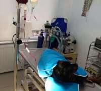 minouvet-veteriner-klinigi-697