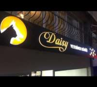 Daisy Veteriner Kliniği