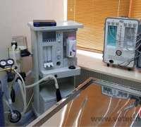 eray-veteriner-klinigi-579