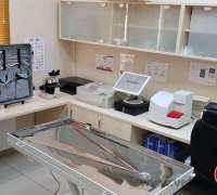 eray-veteriner-klinigi-733