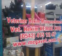 megavet-veteriner-klinigi-980