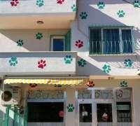 silivri-veteriner-klinigi-685