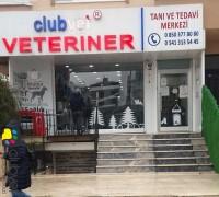 clubvet-veteriner-klinigi-197